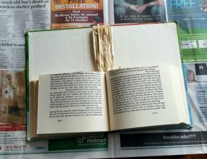 book-torn-in-half