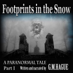 Footprints in the Snow Audiobook Paranormal P1